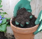 Best Potting Mix For Your Plants Container Gardens